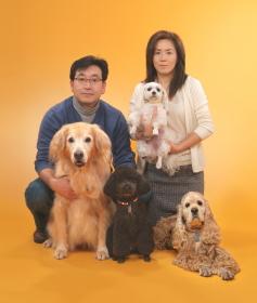 ワンちゃんで賑やかなペットと一緒に撮影です。 各々の犬ちゃん達の写真はペット写真の頁にあります。