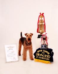 日本一の警察犬と家族写真 江戸川区 家族記念写真、ファミリーフォト、ペットと一緒の写真を撮影