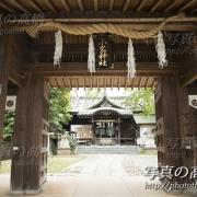 小岩神社で結婚式記念撮影は写真の高橋