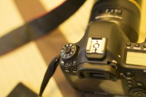 東京の写真館で家族写真を撮りたいシーン│江戸川区写真スタジオ 小岩駅の写真の高橋